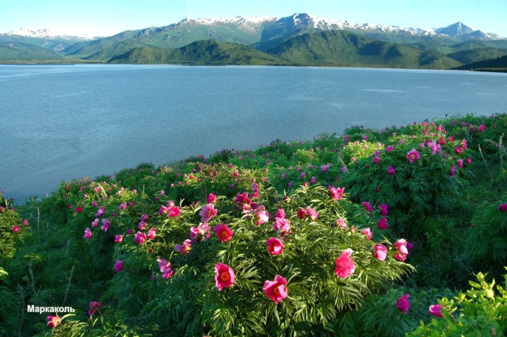Markakol Lake