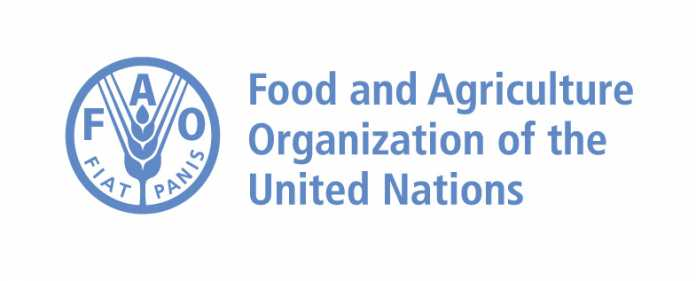 FAO_Scholarships_2017-696x281