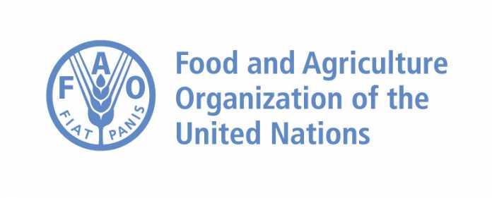 FAO_Scholarships_2017-696x281