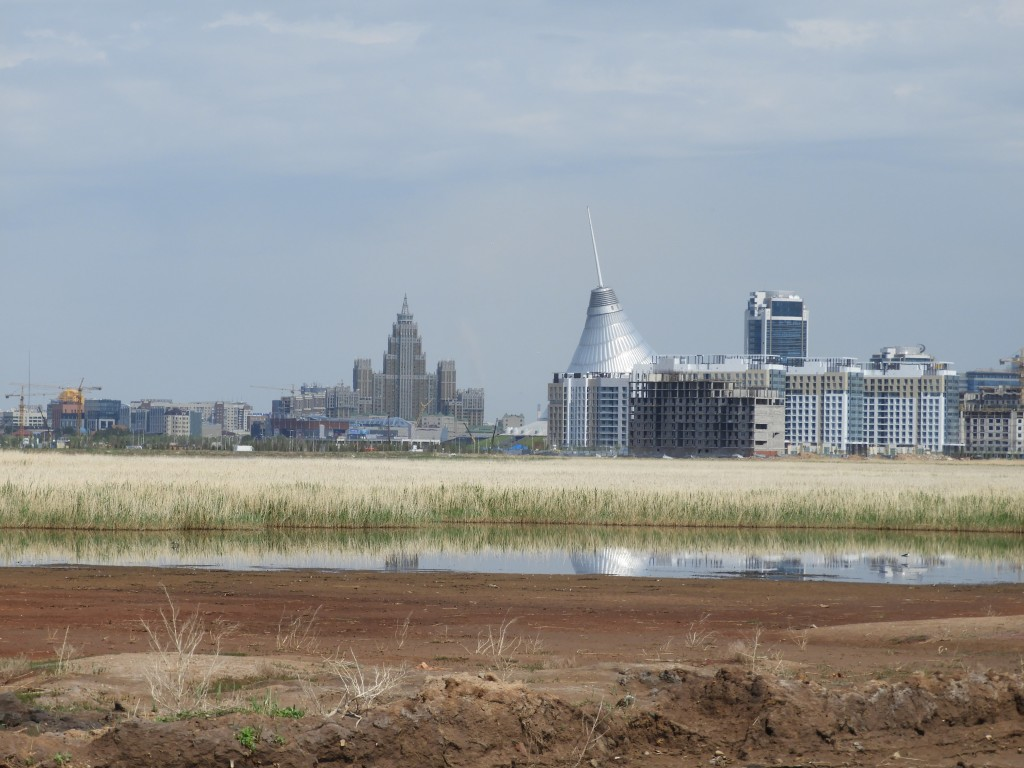 Astana marsh. Photo credit: David Bradshaw.