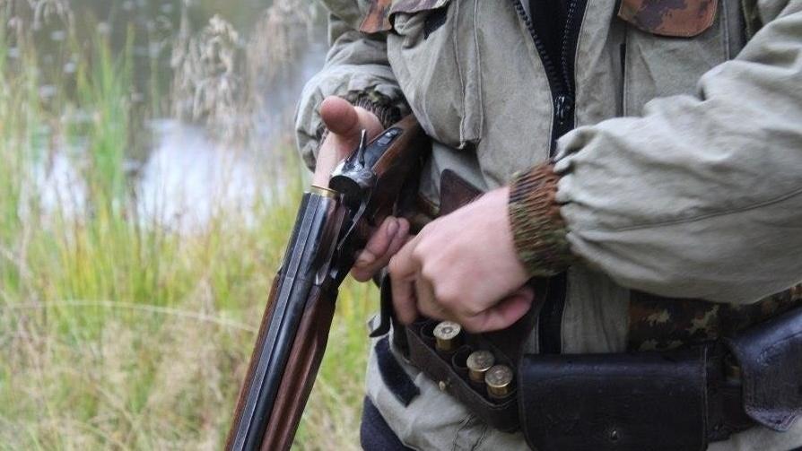 175528 preview image - Казахстан намерен увеличить штрафы за браконьерство, лучше защитить государственные чиновники дикой природы