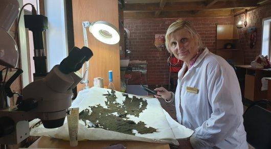 image 4 - Украинский археолог раскрывает тайну древних шелковой ткани
