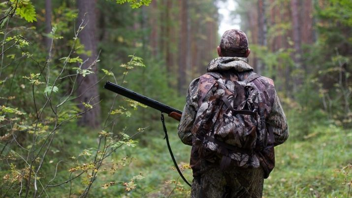 KP story Senate proposes to conduct competitions to secure hunting grounds in Kazakhstan electronically in 2021 - Казахский Сенат предлагает электронные охоты, соревнований в 2021