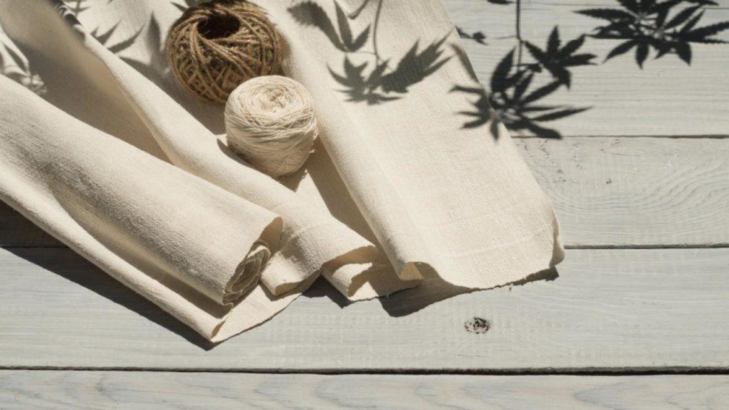 Cannabis textile to produce in Taldykorgan pic 1024x576 - Местного самоуправления, предприниматели планируют построить текстильную фабрику конопли в Алматинской области