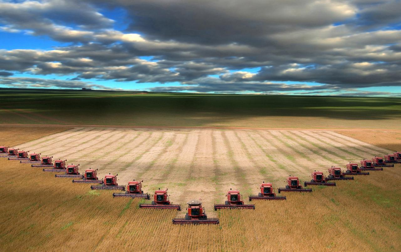12 - Отрасль сельского хозяйства могла бы стабилизировать после пандемии экономик Центральной Азии, по данным Всемирного банка